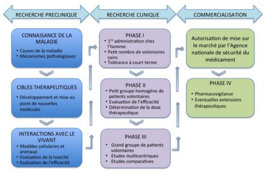 recherche-preclinique-recherche-clinique-commercialisation